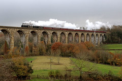 44871 + 45407 - The Christmas Cheshireman (Andrew Edkins) Tags: 44871 blackfive lms steamtrain christmascheshireman cefnmawrviaduct wales uk blackclouds stanier horse trees mainlinesteam charter excursion trip doubleheader speed canon railwayphotography travel winter chirk november 2016 clag exhuast wrexham bridge vallley riverdee deevalley field animals people carriages 460 geotagged 45407 uksteam