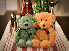 Pals (HTBT) (13skies) Tags: happyteddybeartuesday bears christmas decorations playing hammingitup htbt teddybeartuesday teddybear table hugs