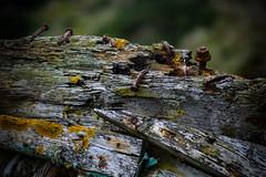 roosty (pamelaadam) Tags: newburgh forviesands scotland june summer 2016 visions meetup digital fotolog thebiggestgroup rust boat