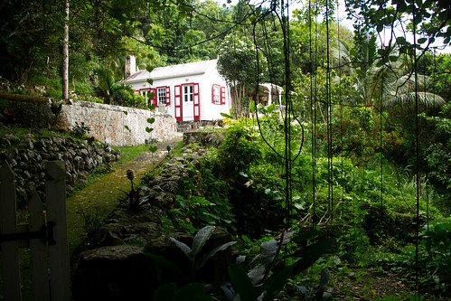 nov 16 010 house in the jungle