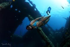 Free Fall (Randi Ang) Tags: freedive freediver tulamben bali indonesia libertywreck usatliberty shipwreck wreckdive underwater photography wide angle scuba diving dive randi ang canon eos 6d fisheye 15mm randiang