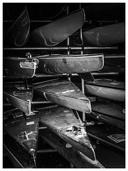 Richmond Canoes (DuncanGunn) Tags: white black london water thames river boats spring richmond canoes photohopexpress