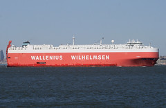 TUGELA - WALLENIUS WILHELMSEN - in New York, USA. April, 2014 (Tom Turner - SeaTeamImages / AirTeamImages) Tags: city nyc red usa newyork water crimson port bay harbor marine ship unitedstates harbour transport vessel pony maritime transportation statenisland bigapple channel roro waterway carcarrier tugela autocarrier walleniuswilhelmsen tomturner vehiclecarrier