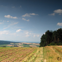 view (carbeck) Tags: trees nature forest 35mm germany square landscape hessen hills fields marburg hesse
