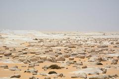 Farafra Oasis White Desert (Sahara Beida)_0449 (Bruce Allardice) Tags: chalk desert egypt limestone whitedesert westerndesert farafra inselberg ventifact saharaelbeyda
