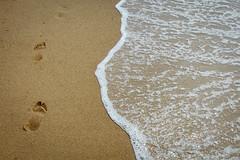 senza titolo (Antonio_Trogu) Tags: sardegna sea italy beach water sand italia mare sardinia shore foam footsteps acqua piscinas spiaggia sardinien arbus orme sabbia sardaigne impronte schiuma costaverde antoniotrogu