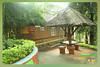 Silent Valley---------------36 (Binoy Marickal) Tags: india green tourism nature water rain kerala mala palakkad evergreenforest treaking silentvalleynationalpark nilgirihills mannarkkad mukkali kuzhur indiabinoymarickal