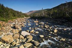 Rocky River (Matt Molloy) Tags: trees canada mountains me river myself landscape photography rocks stream lovelife grosmornenationalpark mattmolloy bewfoundland wallacebrook