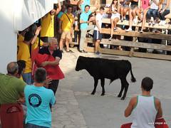 FiestasVispal14-075