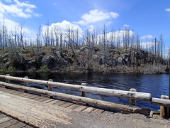 Burned area at Island River entry point