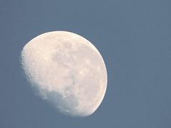 IMG_20140802_162324 (pauloviniciusmoraes) Tags: moon lua noite moonlight