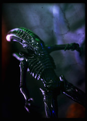 Hiya Toys Aliens: Colonial Marines - Xenomorph Soldier (Ed Speir IV) Tags: fiction game macro guy film scale monster movie toy soldier toys actionfigure video action hiya alien egg colonial bad science aliens figure dio scifi horror videogame sciencefiction marines villain diorama enemy 118 badguy xenomorph 334 colonialmarines hiyatoys
