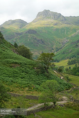 Great Langdale (July 2014 #1) (Lazlo Woodbine) Tags: uk england mountains landscape countryside pentax britain path july hills cumbria 1855mm 2014 britishcountryside thelakedistrict k7 langdalepikes greatlangdale rawtherapee