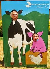 AniResc 056 (danimaniacs) Tags: silly smile animal cutout fun pig cow funny aniresc