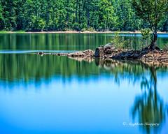 Abstract Me Not (augphoto) Tags: blue lake nature water outdoors us unitedstates scenic southcarolina mountcarmel augphotoimagery