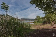 Lac du Salagou-32.jpg (sylvain.collet) Tags: summer lake france water reeds eau t roseaux languedocroussillon hrault lacdusalagou redground terrerouge canonef1635mmf28lii canon5dmarkiii