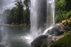 Misol-Ha (Posterior view) (drlopezfranco) Tags: water pool mxico waterfall agua selva jungle palenque tropical chiapas catarata cascada misolha poza cadadeagua