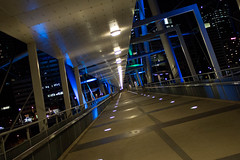 Bridgescape (jpauledwards8587) Tags: bridge light night canon vanishingpoint neon australia brisbane queensland kurilpa kurilpabridge