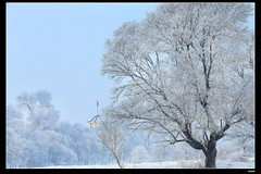 nEO_IMG_DP1U5566 (c0466art) Tags: world china trip morning travel trees light white snow cold ice beautiful weather canon river landscape island boat scenery very province 2014  1dx  c0466art