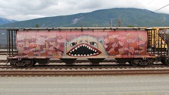 CN 111205 Jasper AB 22 Aug 14 (AA654) Tags: canada art graffiti jasper rail theory ab canadian railcar national covered alberta hopper 1000000railcars na2014