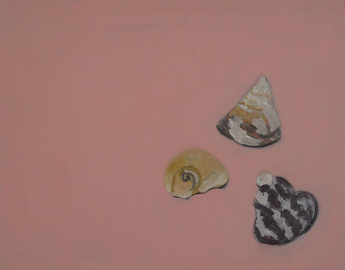"Shells in a Corner - oil on board 16"" x 20"" $800"