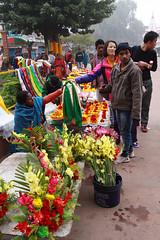 India_0036