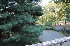 IMG_3812 (ShellyS) Tags: nyc newyorkcity centralpark manhattan parks
