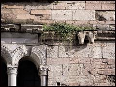 Manuale di sopravvivenza (Giovanni Picuti, gi Buferanera) Tags: pietra perugia umbria citt bevagna giornaledellumbria