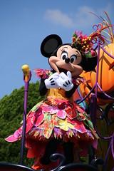 Happy Halloween Harvest (sidonald) Tags: halloween tokyo disney parade minnie minniemouse tokyodisneyland tdl   tdr tokyodisneyresort     happyhalloweenharvest disneyshalloween2014