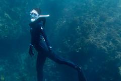 DSC_6043.jpg (d3_plus) Tags: sea sky fish beach japan scenery diving snorkeling  shizuoka   j1  izu     skindiving freediver minamiizu     nikon1 hirizo   nakagi nikon1j1 1nikkor185mmf18  beachhirizo misakafishingport