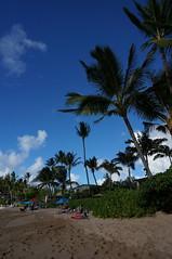 Maui: Napili Baach (katsuhiro7110) Tags: road speed hawaii maui winding napili baach mauiislandhawaii beachwestinmauiresortandspasandcastleblackrockkaanapalibeachlahainaluaubanyantreeparkiaovalleystateparkhaleakalnationalparkhanahwyhanaforestreservehanabeachparkkahekilibeachparknapilibay2014september