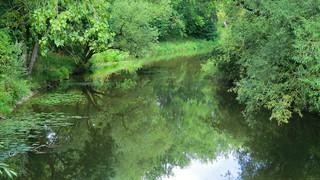 Wuerttemberg - Crailsheim: river Jagst