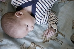 My new hand! (Pejasar) Tags: ezra hand contemplation introductions newness new baby grandson infant child hope
