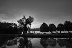 """Le canal et l'tang d""""Isle ce matin (jeanmariewarest) Tags: france french canal etang eau matin arbre solei noiretblanc picardie saintquentin nature aisne paysage"""