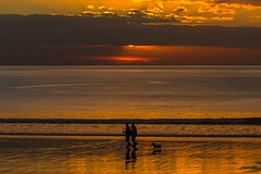 Golden hour. (bainebiker) Tags: sunset sea people dog beach clouds sky silhouette canonef100400mmf4556lis borth ceredigion walesuk canonef100400mmf4556lisiiusm