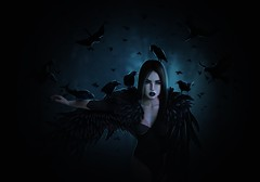 The Raven Queen (Aylin (Lexxxa Pearl)) Tags: raven ravens crow crows black birds fly flying forest trees fog night midnight dark goth bird woman lady princess queen wings creature mythic mythical roleplay digital painting mystic mystical