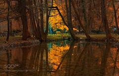 The Spirit of Autumn (PhiladelphiaHVAC165) Tags: autumn yellow trees leaves lake red color water reflection river blue light tree orange green sarajevo bosnia jesen msphotography herzegovina bosna hercegovina vrelo bosne ilidza sejmenovic mevludin