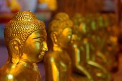 2015.08.19 13.47.26.jpg (Valentino Zangara) Tags: 5star budda cave flickr golden myanmar pindaya statue shan myanmarburma mm