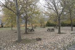udazkena (eitb.eus) Tags: eitbcom 27117 g1 tiemponaturaleza tiempon2016 alava laguardia miguelangellopezdelacalle