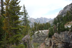 Mountains (Mike Burns) Tags: grandtetons mountains trees