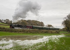 Steam and rain in Dorset (jono85) Tags: steam locomotive 31806 u class tle time line events br exbr preserved swanage railway train