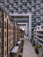 Kranhuser - Cologne (Harald Schnitzler) Tags: nordrheinwestfalen deutschland de kln rheinau crane kran kranhuser architecture architektur architectural modern detail