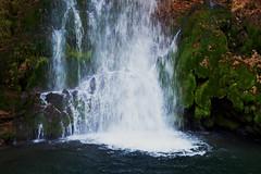 Vodopad Veliki Buk (Vojinovic_Marko) Tags: vodopad waterfall lisine despotovac srbija serbia river reka nature outdoor nikon d7200 velikibuk beljanica reica