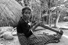 Timor-41