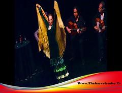 Dancers At The Barre | Dance Community Page | Thebarretender.Tv (Thebarretender.Tv) Tags: wheelchairballroomdance barreworkout barreclasses dancersatthebarre raisingthebarre barredancestudio dancenews barreonlineclasses danceinstructors dancebarreshows barrechoreography soyouthinkyoucandance danceon dancesport