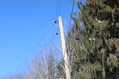 National Grid 2.4kV - New Marlborough, MA (The Power Line Page) Tags: 2400v