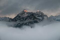 Zermatt 19 (jfobranco) Tags: switzerland suisse valais wallis alps zermatt gornergrat cervin matterhorn