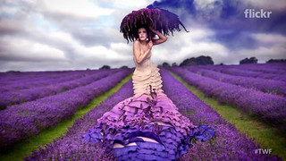 ✦ Now featuring: The Weekly Flickr - Kirsty Mitchell by Flickr ...