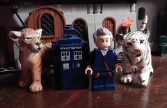 2016-303 - National Cat Day (Steve Schar) Tags: 2016 wisconsin sunprairie nikon nikonaw120 project365 project366 lego minifigure doctorwho tardis cat cats tiger tigers nationalcatday whitetiger