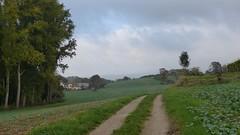 Selztal zwischen Ingelheim und GroÃ-Winternheim